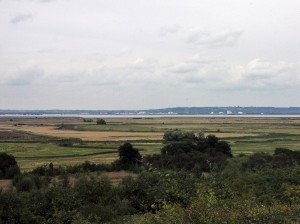 North Kent Marshes